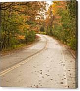 Autumn Road II Canvas Print