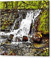 Autumn Scene With Waterfall In Forest Canvas Print