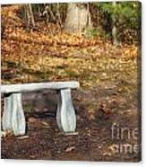 Autumn Seat Canvas Print