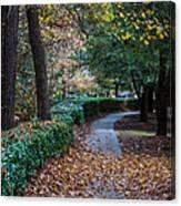 Autumn Side Walk Canvas Print