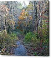 Autumn Silence No.2 Canvas Print