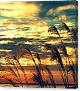 Autumn Skies Over The Ocean Canvas Print