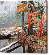 Autumn Snow Cranberry River Canvas Print