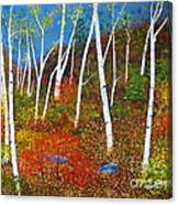 Autumn Splendour Canvas Print