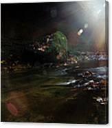 Autumn Sunburst Canvas Print