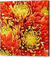 Autumn Sunrise Bouquet Canvas Print