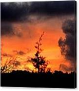 Autumn Sunrise From The Back Deck Canvas Print