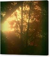 Autumn Sunsets Canvas Print