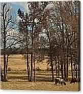 Autumn Texas Pasture Canvas Print