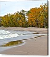 Autumn Tides Canvas Print