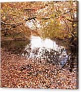 Autumn Tranquility Canvas Print