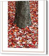 Autumn Tree Poster Canvas Print