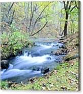 Autumn Tributary Canvas Print