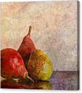 Autumn Trio  Canvas Print
