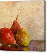 Autumn Trio  II Canvas Print