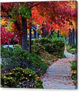 Autumn Walk In Grants Pass Canvas Print