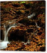 Autumn Washed Away Canvas Print