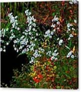 Autumn Wildflowers Canvas Print