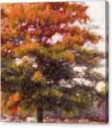 Autumn Xviii Canvas Print