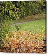 Autumnal 1 Canvas Print