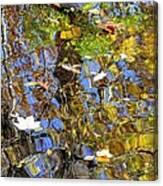 Autumnal Abstracious Canvas Print