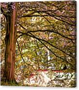 Autumnal Colors In The Summer Time. De Haar Castle Park Canvas Print