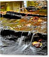 Autumnal Serenity Canvas Print