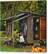 Autumn's Bounty Canvas Print