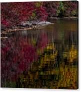 Autumns Color Pallette Canvas Print