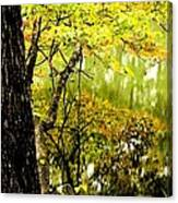 Autumn's First Reflections II Canvas Print