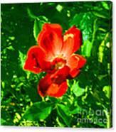 Autumn's  Flower Canvas Print
