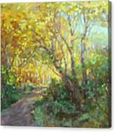 Autumn's Glow Canvas Print