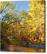 Autumn's Golden Pond Canvas Print
