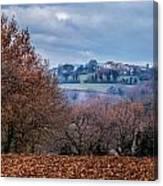 Autumns Leaves Winters Clouds Canvas Print