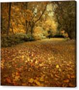 Autumn's Passage Canvas Print