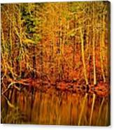 Autumn's Past Canvas Print