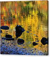 Autumns Rainbow Canvas Print