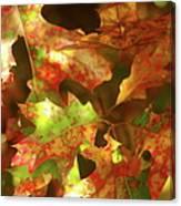 Autumn's Red Oak Leaves Canvas Print