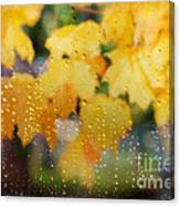 Autumns Tears Canvas Print