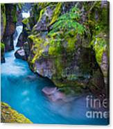Avalanche Creek Gorge Canvas Print