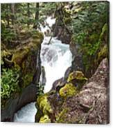 Avalanche Creek In Glacier Np-mt Canvas Print