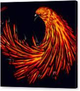 Avian Canvas Print