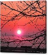 Awaken The Dawn Canvas Print