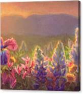 Awakening - Mt Susitna Spring - Sleeping Lady Canvas Print