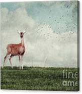 Aware Canvas Print