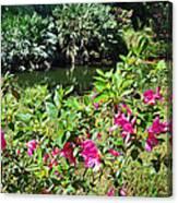 Azaleas By The Pond Canvas Print