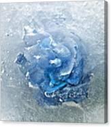 Azure Touch  Canvas Print