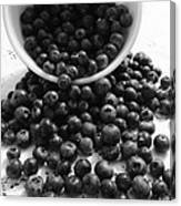 B And W Blueberries Canvas Print