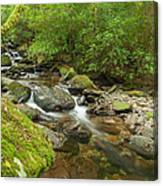 Kerry River Ireland Canvas Print