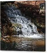 Babbling Brook 2013 Canvas Print